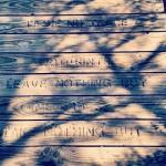 """""""Ne prenez que des souvenirs"""". Lost Dutchman State Park"""