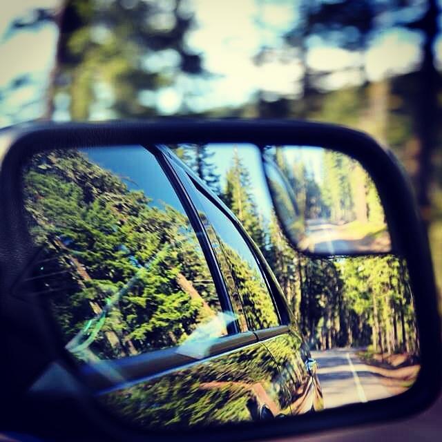 Sur les routes de l'Oregon. Vert, vert, vert...