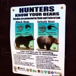 Petit manuel du parfait chasseur d'ours