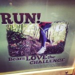 Bears love the challenge