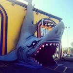 Les magasins de plage aux States, c'est toujours une histoire