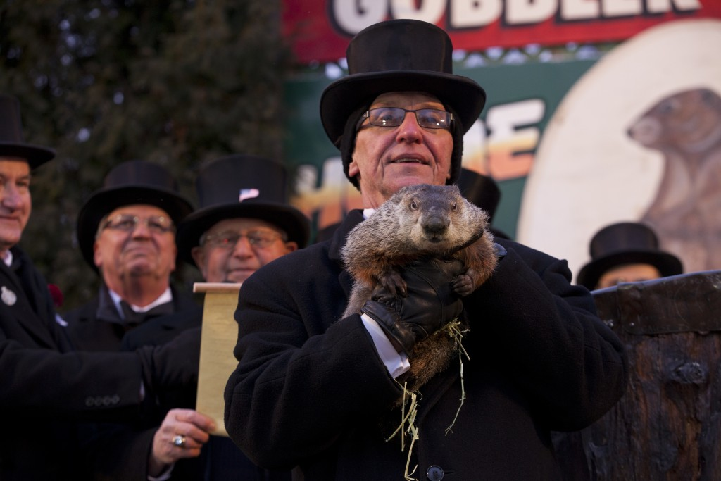 Groundhog_Day,_Punxsutawney,_2013-2