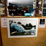 Gallerie : photo 49