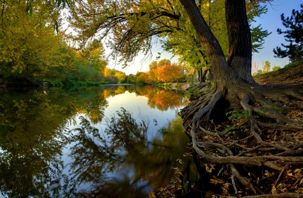 Boise_River_Autumn