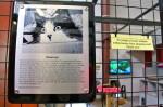 Galerie : photo 95
