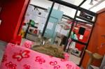 Galerie : photo 47