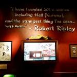 Galerie : photo 22