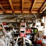 Galerie : photo 2