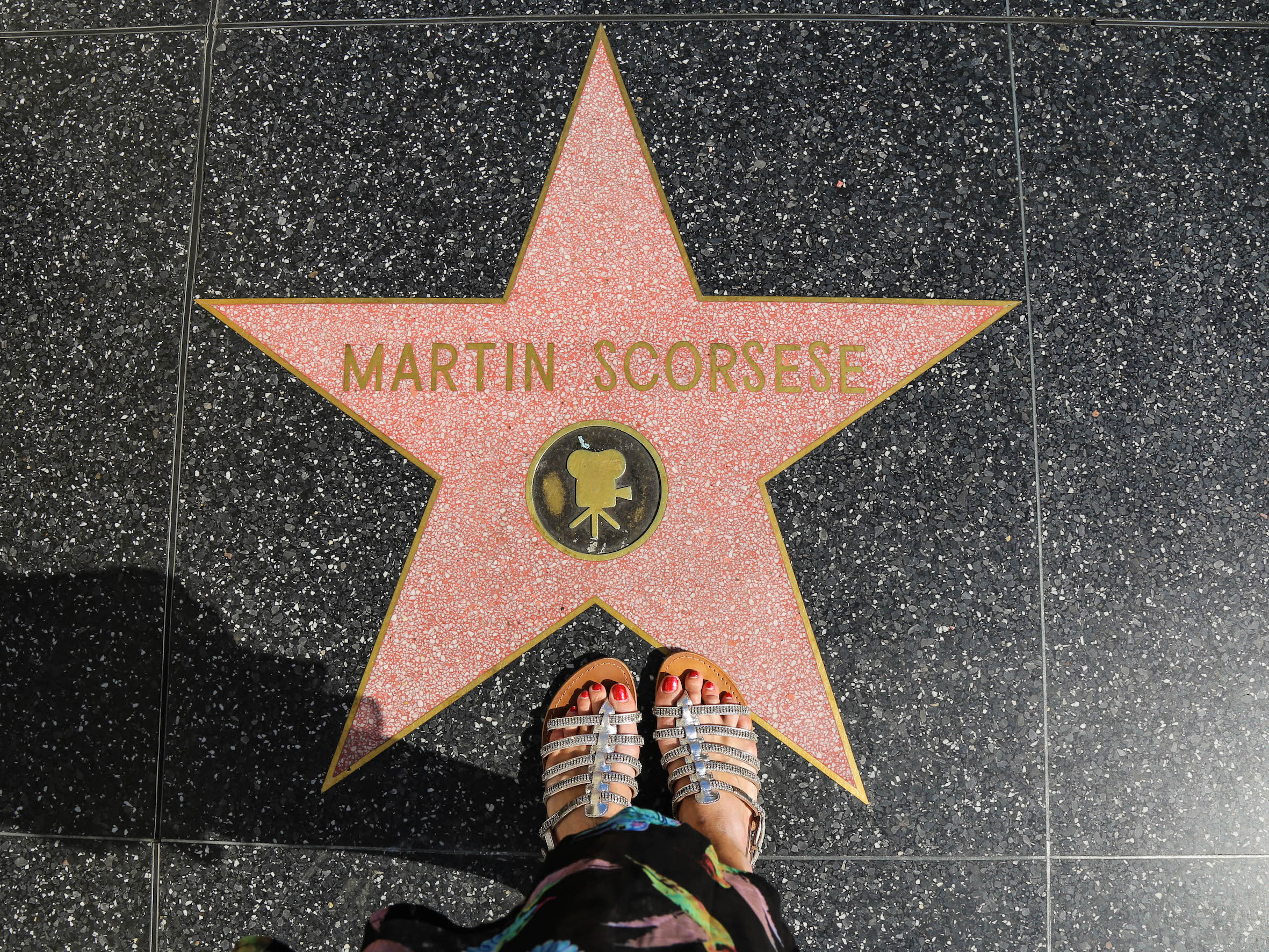 brancher Hollywood