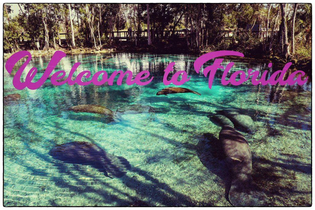 Sud de la Floride sites de rencontre